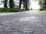 Komen de stokoude waaltjes van de Harberinksweg in Enschede terug?