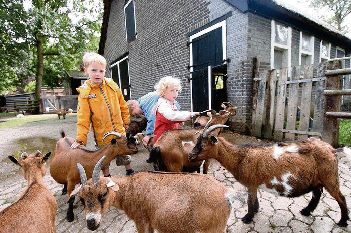 Archieffoto van de kinderboerderij de Hollandsche Hoeve in Goes.