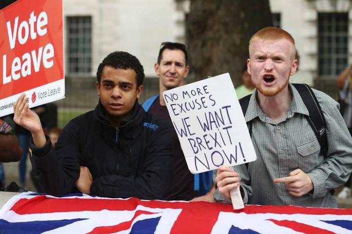 Een pro-Brexitbetoger schreeuwt naar deelnemers aan een pro-Europa-demonstratie in Londen, september dit jaar. foto AFP