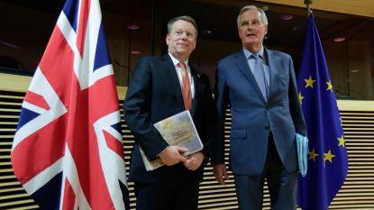 Britse en Europese onderhandelaars hernemen gesprekken over handelsverdrag