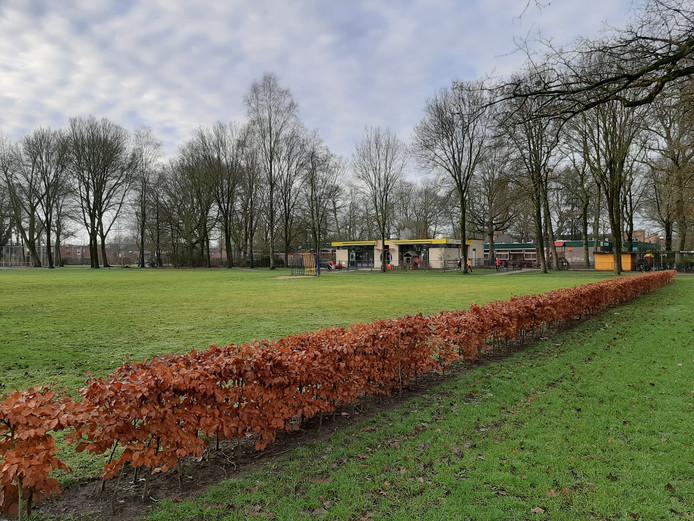 Het huidige gebouw van De Marke, gezien vanaf het Schoutenveld. Op het grasveld komt de nieuwbouw van De Ploeg.