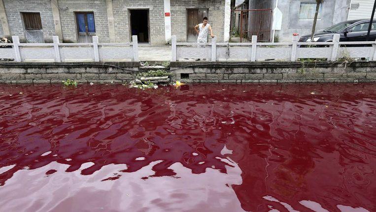 Een vervuilde rivier in de Chinese stad Wenzhou. Mondiaal 'subsidieert' China met 2.300 miljard dollar vervuiling het meest. In de VS gaat het om 655 miljard, in Rusland om 335 miljard. Beeld reuters