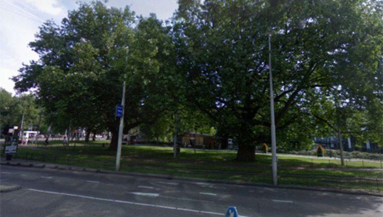 De taxistandplaats Leidseplein moet worden verplaatst naar het Leidsebosje aan de Stadhouderskade. Foto Google Streetview Beeld