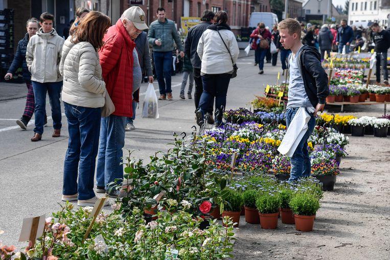 Archieffoto - De plantenmarkt in Opdorp.