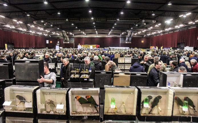 De vogelbeurs wordt al decennialang twee keer per jaar gehouden en trekt veel publiek.