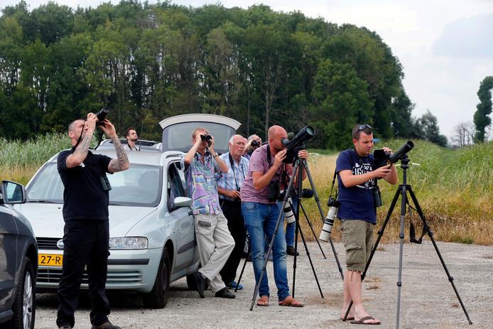 Ook boswachter Thomas van der Es (rechts) probeert de vogel te fotograferen.