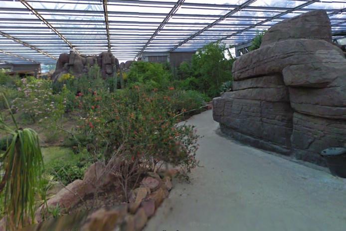 De Desert in Burgers' Zoo.