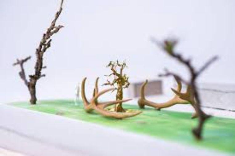 Hindeloopen: Shen Yuan (China), Flora & Fauna Beeld -