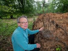 Cor (64) wroet onder omgewaaide bomen en ontdekt zo een eeuwenoude oven in het bos bij Vaassen: 'Heel indrukwekkend'