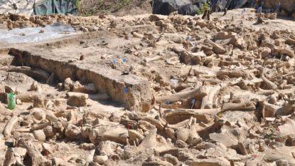 Mysterieuze constructie uit ijstijd met botten van 60 mammoets opgegraven in Rusland