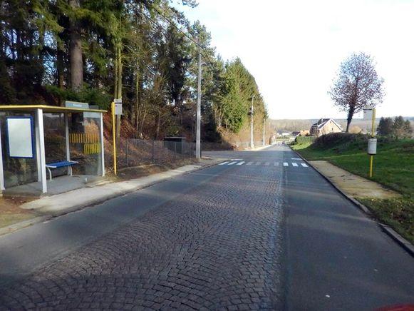 Door de werken in Sint-Agatha-Rode zullen de asfalteringswerken wat extra hinder veroorzaken bovenop die in Terlanen