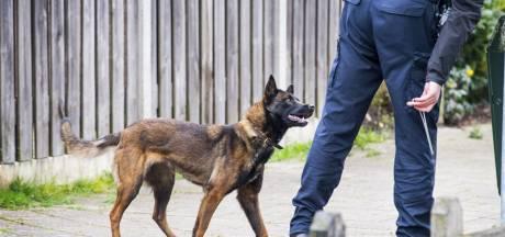 Overvaller van hotel in Meppel door politiehond betrapt op dak van schuur