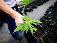 'Drugsdealers' uit Putten willen via rechter voorkomen dat ze op straat belanden