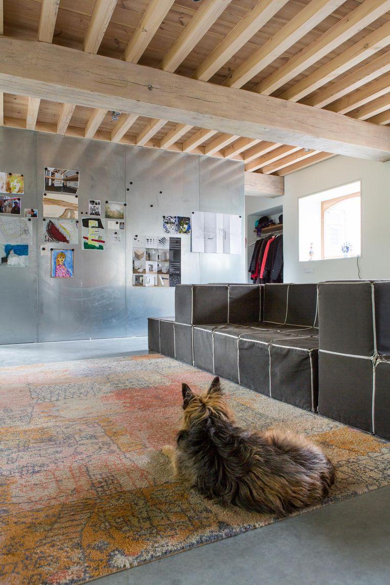 'De bank is van William Graatsma, van het Centrum voor Cubische Constructies. Hij bestaat uit kleine kubussen met ritsen. Het kleed was de favoriete plek van onze hond Birre, die hier nog op de foto te zien is. Tot ons verdriet is hij pas overleden.' Beeld Henny van Belkom