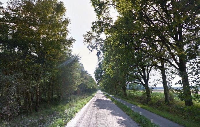De Roovert, de oude zandweg tussen Hilvarenbeek en Poppel.
