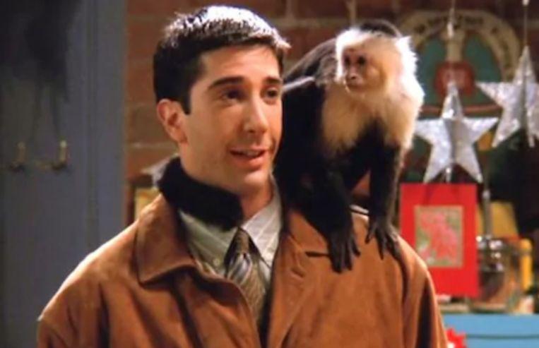 Ross en zijn aapje, Marcel in 'Friends'.