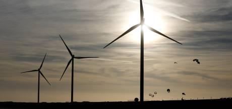 Nieuwsoverzicht | Jorritsma wil alle nertsen in Zuidoost-Brabant ruimen - Windmolens en zonnecellen pompen stroomnet te vol