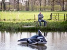 Aalscholvers vreten nieuwe visvijver in Zwiep nog voor opening leeg