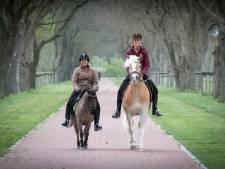 De metropool Arnhem-Nijmegen houdt zijn eigen 'Central Park'