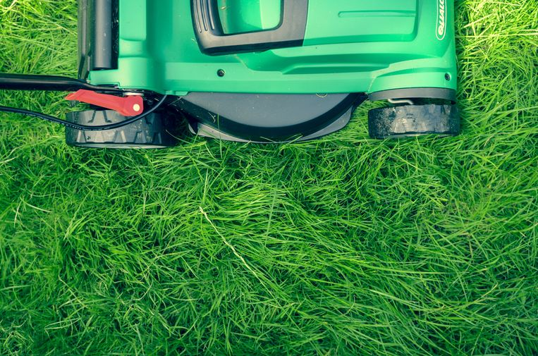 De grasmachine is een van die onontbeerlijke tools om de tuin weer lentefris te krijgen.
