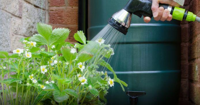 Illustratie buurtgemeenten organiseren groepsaankoop regenwatertonnen