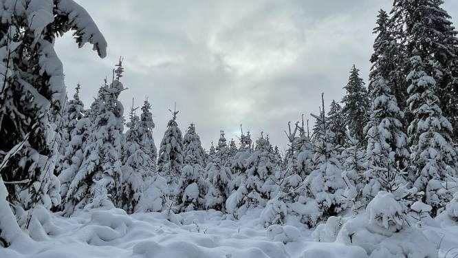IN BEELD. Bijna halve meter sneeuwpret in Ardennen