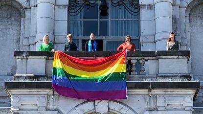 Meer regenbogen in Vilvoorde tegen homo-, bi- en transgenderhaat