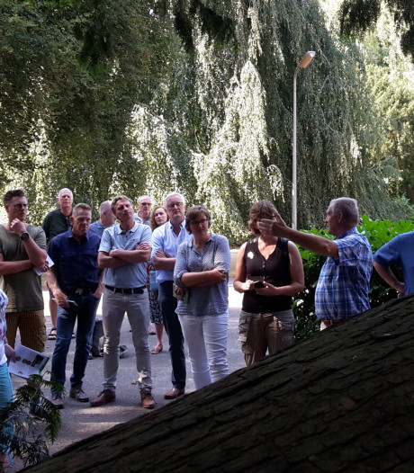 Boekje met wandeltocht langs bijzondere bomen in Ermelo