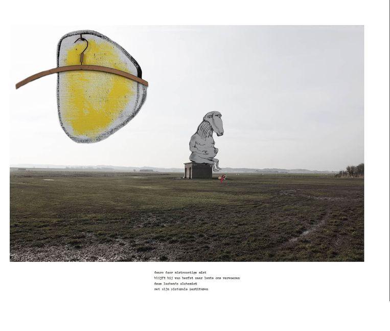 Aan de foto's van de landschappen voegde Frederique van Rijn beelden van Lucebert toe. Het gedicht, genaamd Grassère, luidt:  dwars door mistroostige mist blijft hij van herfst naar lente ons vervoeren deze lachende alchemist met zijn picturale partituren Beeld frederique van rijn
