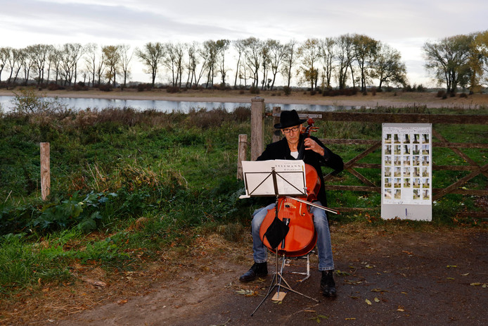 Een cellist speelt een requiem als protest tegen de kap van bomen bij de Bisonbaai.