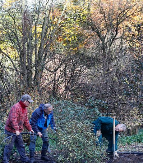 Water voor de wereldberoemde  rhododendrons van Wageningen
