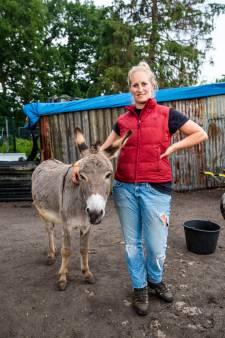 Lenneke Barten loopt zeven mille bijeen voor haar  ezels