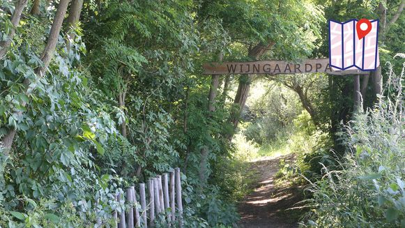Boven de ingang hangt een duidelijk bord, alleen moet je dit nog weten te vinden.