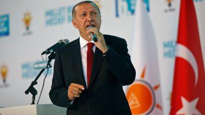 Turkije klaagt Amerikaanse heffingen aan bij Wereldhandelsorganisatie