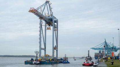 Madrid Maersk | HLN
