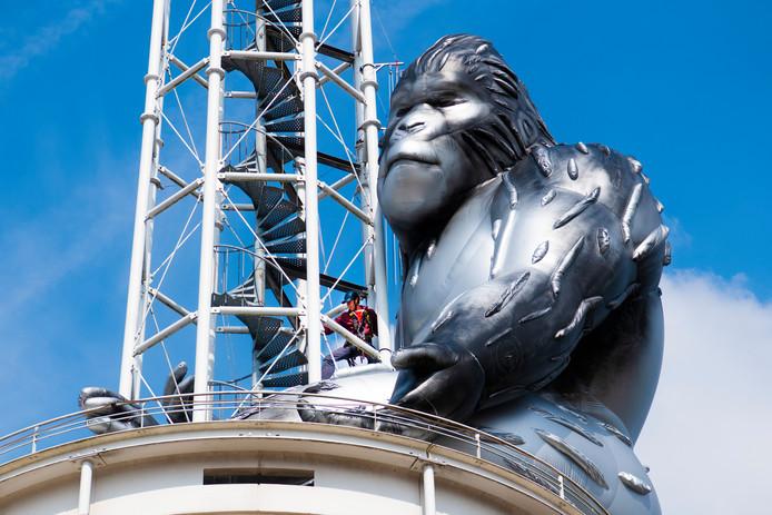 De aap die woensdag een plek kreeg op het torentje van het Stadhuis inspireerde John Berends gisteravond tot een vergelijking met de nieuwe burgemeester.