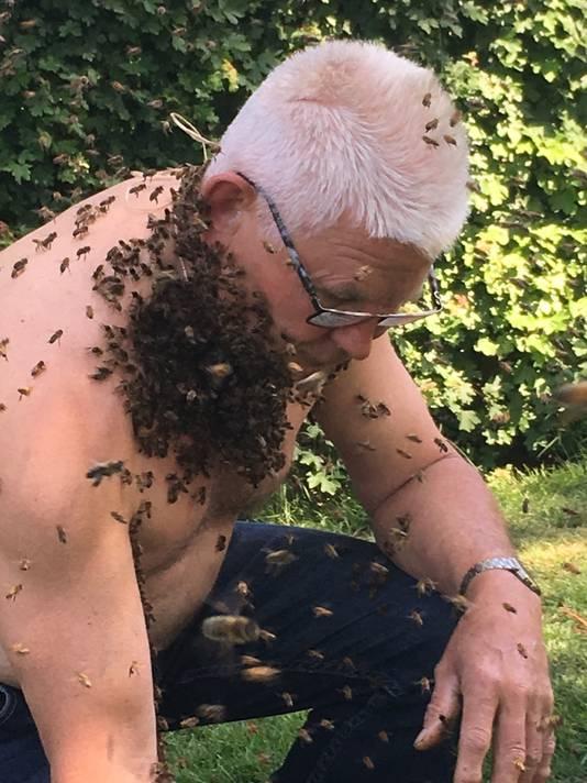 De bijenbaard begint te groeien.