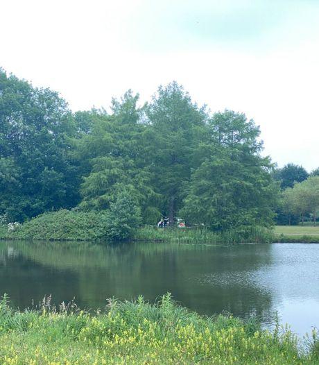 Man trekt vrouw bosjes Park de Wezenlanden Zwolle in, omstanders grijpen in