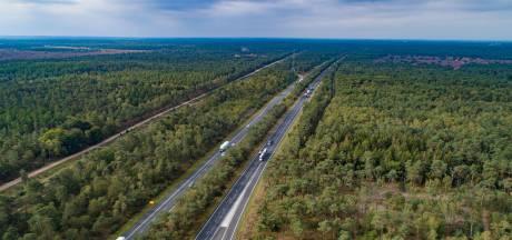 Veelbesproken bomenkap op A28 toch uitgesteld