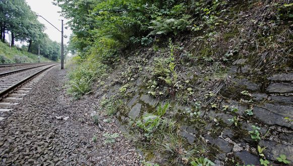 Het gebied met de spoorlijn waar de nazitrein hoogstwaarschijnlijk is verborgen.