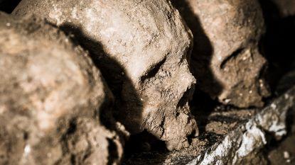 Aalst is ouder dan gedacht, ontdekken archeologen