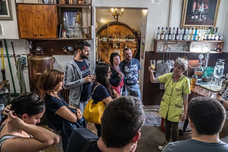 Aan het einde van de rondleiding door de familiedestilleerderij Guy in Pontarlier krijgen bezoekers, vaak tot hun verbazing, een glaasje absint aangeboden. Beeld Joris Van Gennip