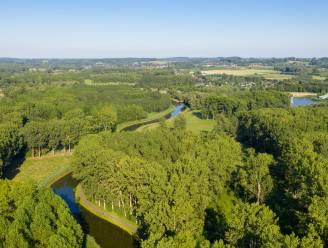 Provincie koopt 8,5 hectare bos voor ontwikkeling tot natuurreservaat