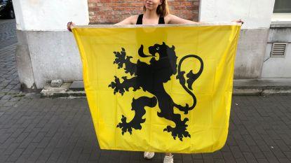 N-VA Ieper verdeelt vlaggen met Vlaamse Leeuw voor 11 juli