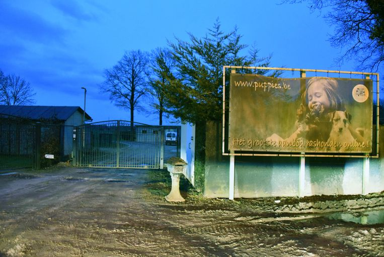 De ingang van Kempenaars Kennel aan Bos Dellen in Kasterlee.