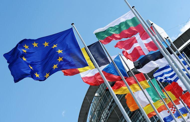 Vlaggen van EU-landen voor het Europees Parlement in Straatsburg. Beeld epa