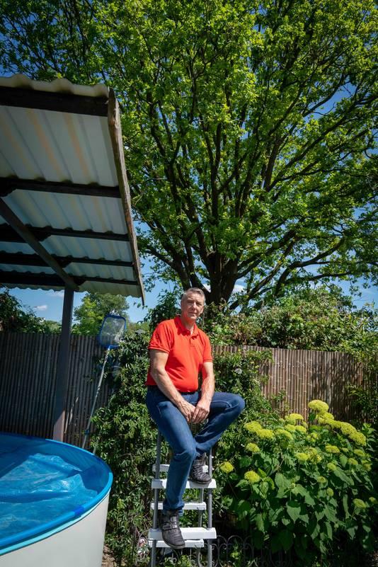 John van Wessel in zijn achtertuin met achter hem, op gemeentegrond, de eik die vol zit met twaalf nesten van de eikenprocessierups.