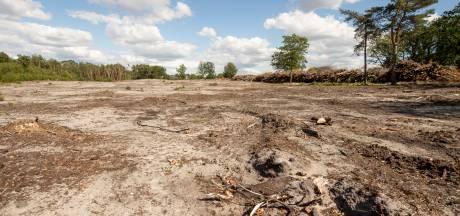 Roer definitief om: Natuurmonumenten stopt na kritiek met grootschalige bomenkap