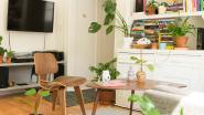 10 interieurspullen onder de 20 euro die je huis meteen mooier maken