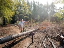Puttenaar kan weinig beginnen met  geërfd bosje aan de Wilhelminalaan